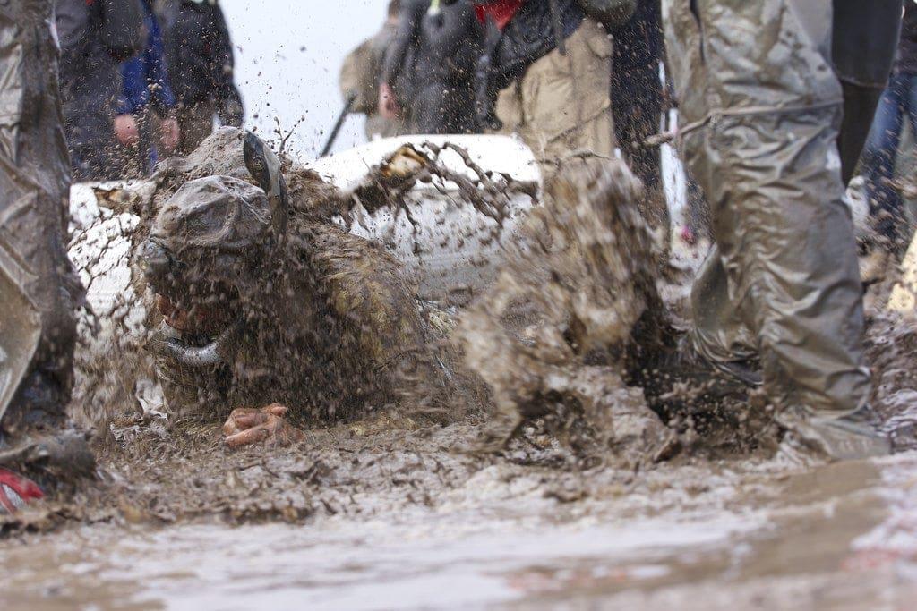 ABSOC 001 - Disgusting Mud