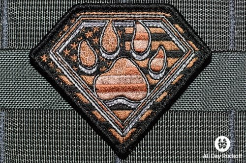 paw of Steel (Desert)