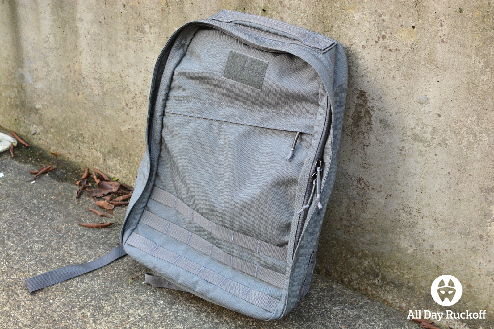 Wolf Grey GR1 Outside