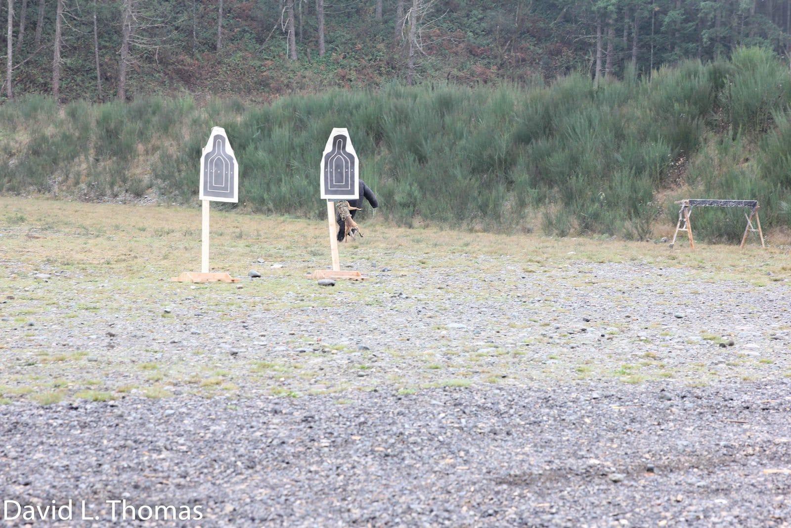 Arden Tough Dog Chase 3