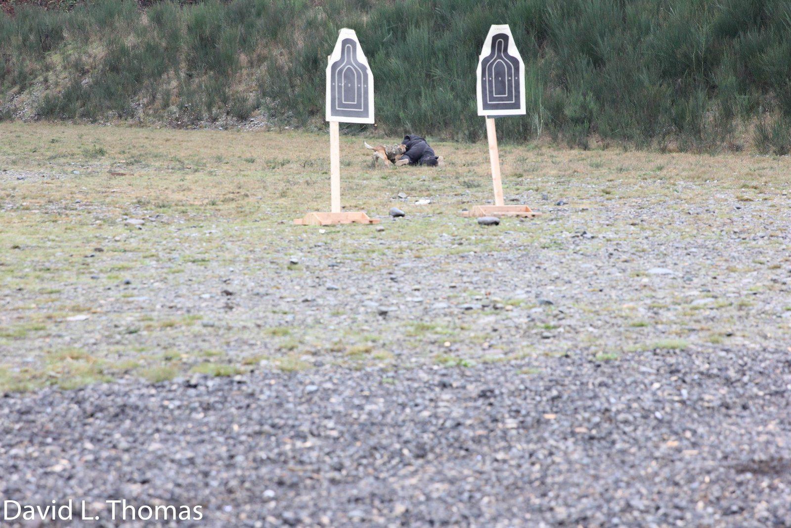 Arden Tough Dog Chase 4